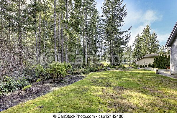 Garten mit Pinien und Seiten des Hauses. - csp12142488