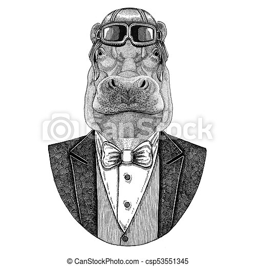 232edf1b8 Hippo