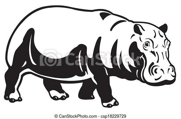 hippopotamus black white - csp18229729