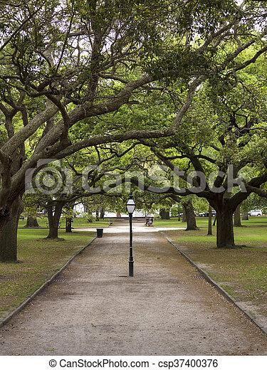 Charleston histórico, Carolina del Sur - csp37400376