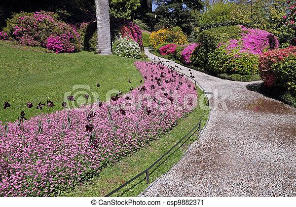 histórico, jardim, ruela - csp9882371