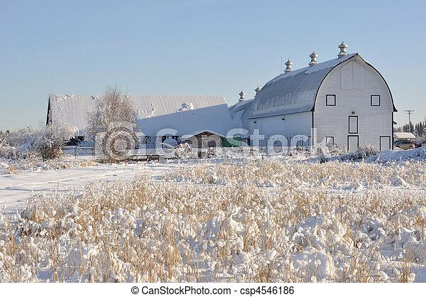 Historic Dairy Barn at Creamer's Field during Winter - Fairbanks, Alaska - csp4546186