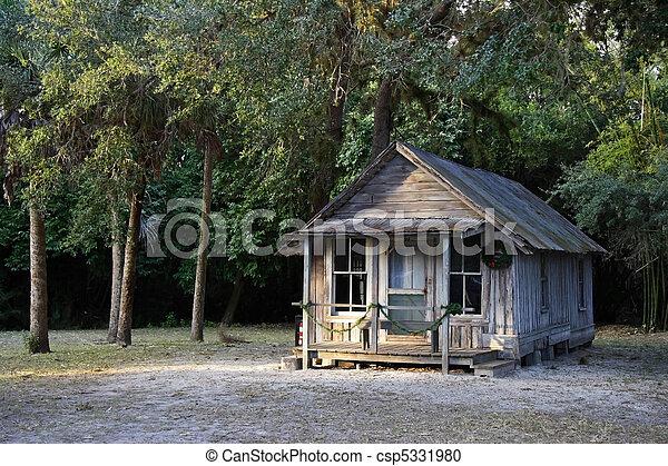 Historic Home - csp5331980