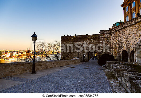 Historic Royal Palace in Budapest, Hungary - csp25534756