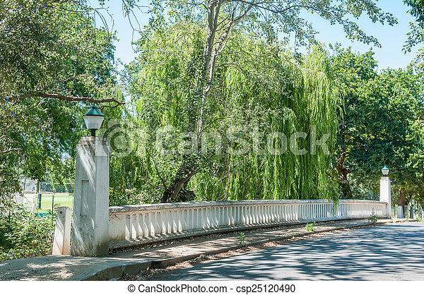 Historical bridge in Stellenbosch - csp25120490
