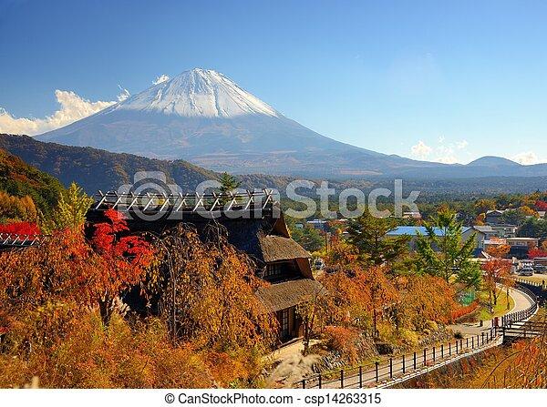 historyczny, japończyk, chaty - csp14263315