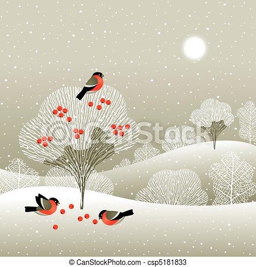 hiver, forêt - csp5181833