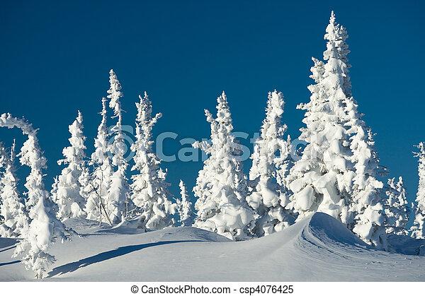 hiver, jour - csp4076425