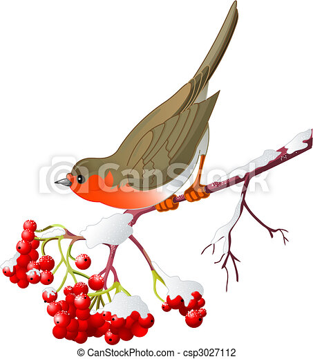 hiver, oiseau - csp3027112