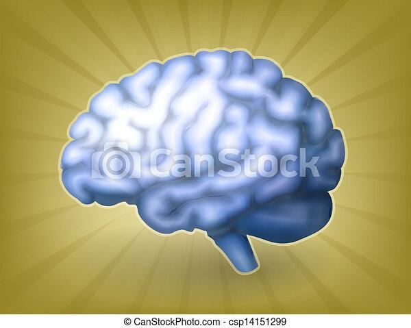 hjärna, eps10, blå, mänsklig - csp14151299