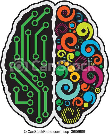 hjärna, mänsklig - csp13606989