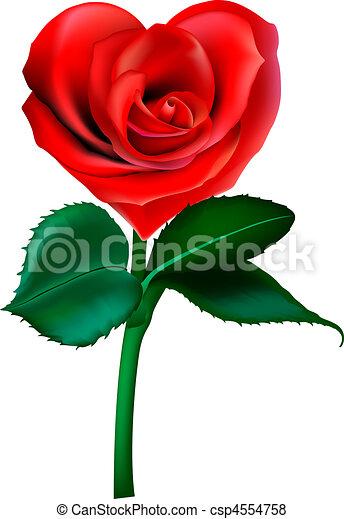 hjärta, blomma - csp4554758