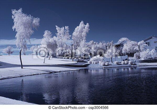 La casa del lago del desierto - csp3004566