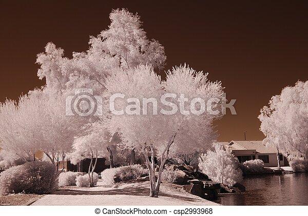 La casa del lago del desierto - csp2993968