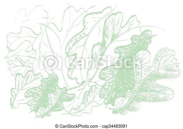 Hoja de roble. Defoliación de otoño en la naturaleza - csp34483091