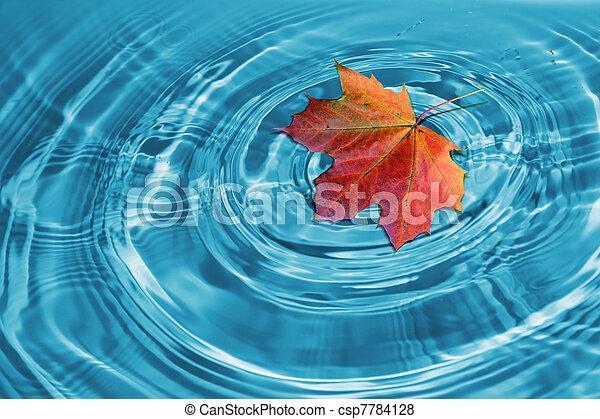 hoja otoño, arce - csp7784128