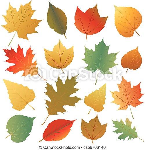 Hoja de otoño - csp6766146