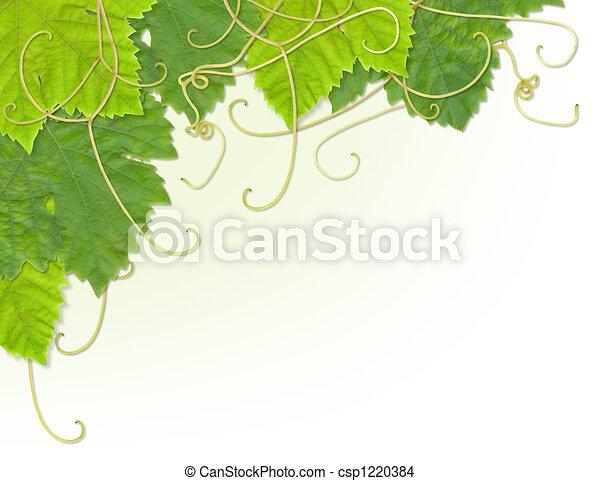 hoja uva, esquina - csp1220384