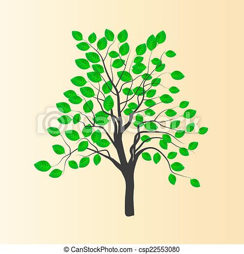 Hojas árbol Joven Vector Verde Dibujo