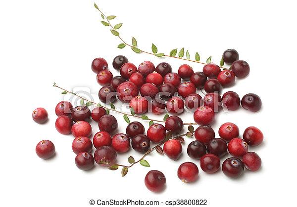 Arándanos maduros con hojas - csp38800822