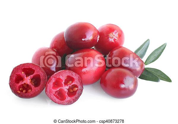 Grandes arándanos maduros con hojas - csp40873278