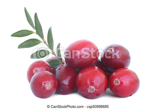 Grandes arándanos maduros con hojas - csp50998685