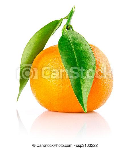 Fruta de mandarina fresca con hojas verdes aisladas - csp3103222