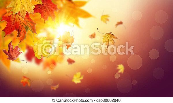 Hojas caídas de otoño - csp30802840