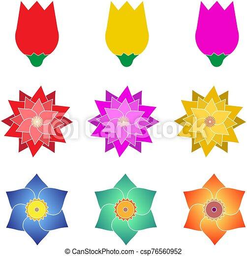 hojas, paquete, tarjeta, tienda, vector, conjunto, boda, marca, banner., flor, ilustración, producto - csp76560952