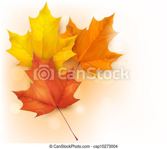 Un fondo de otoño con hojas - csp10273004