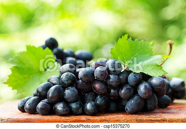hojas, uva - csp15375270