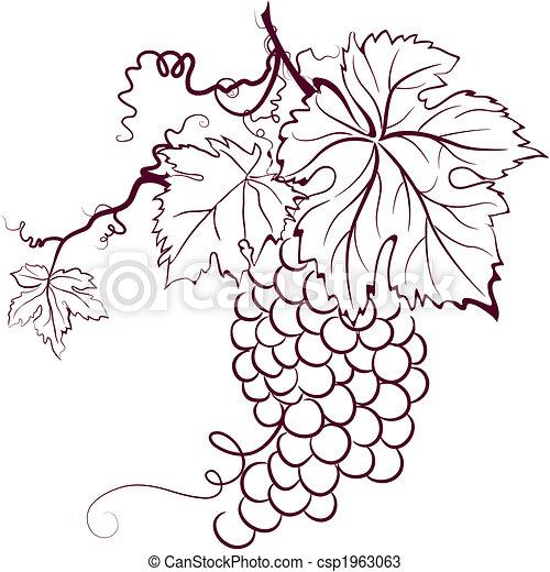Uvas con hojas - csp1963063