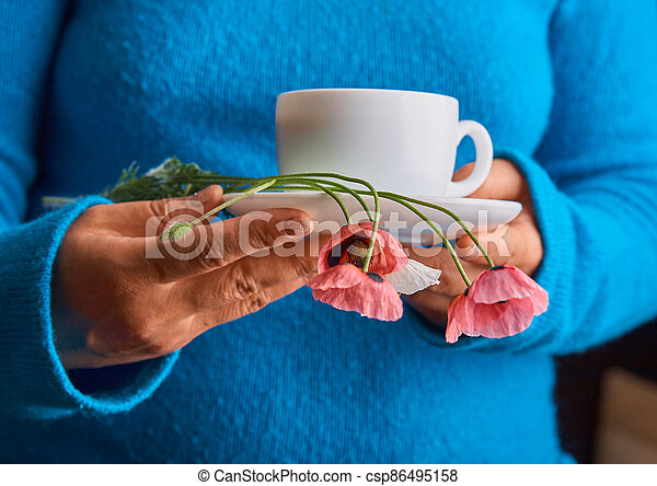 holding poppy flowers and a White cup of warm morning coffee. Blue background. - csp86495158