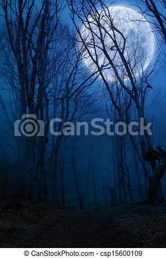 holdtölte, sötét, erdő, éjszaka, agaist - csp15600109