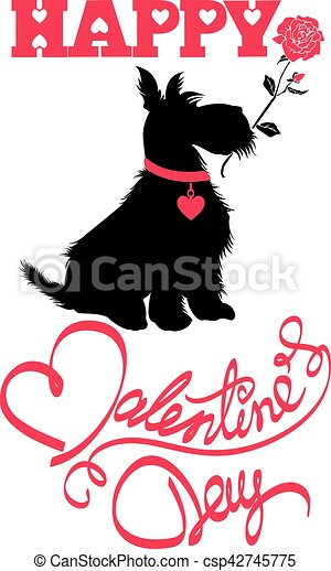 Holiday card. Calligraphic hand written text Happy Valentine`s Day and scottish terrier dog silhouette with rose, isolated on white background. - csp42745775