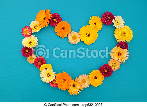 Hollow heart shape of dahlias and calendulas on teal - csp63210907