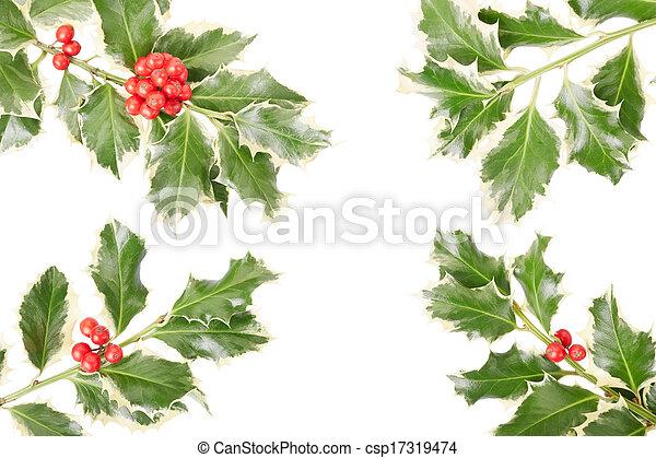 Holly twig border, decoration - csp17319474