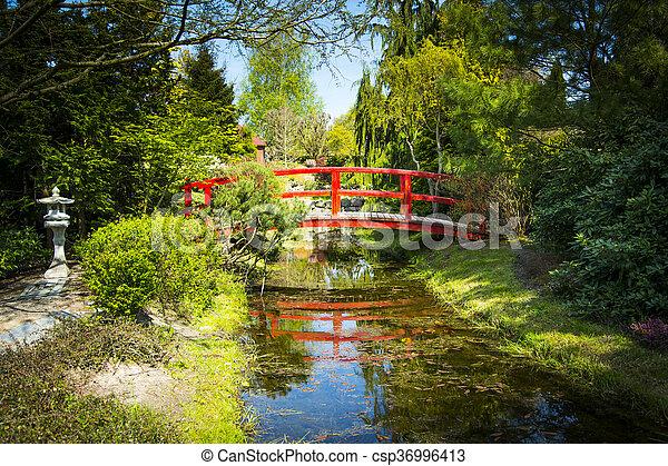 Holzbrücke Japanischer Garten Brücke Kleingarten Hölzern Polen