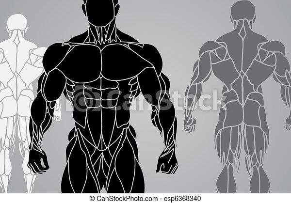 Hombre fuerte - csp6368340