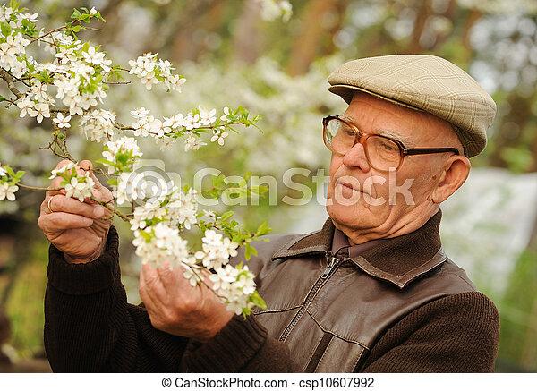 Un anciano feliz en un jardín - csp10607992