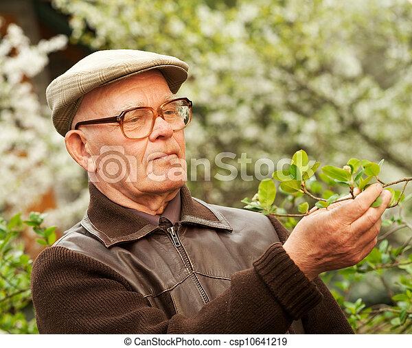 Un anciano feliz en un jardín - csp10641219