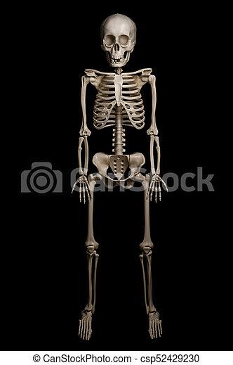 Hombre negro esqueleto plano de fondo aislado Esqueleto