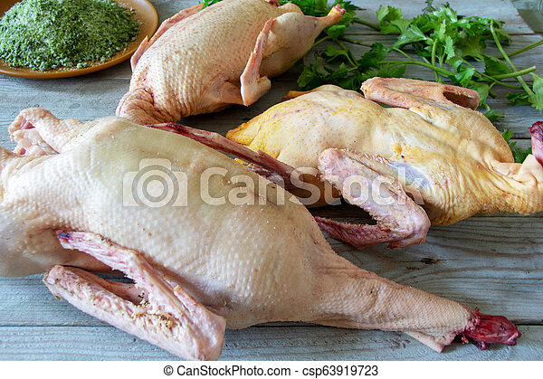 Home a plucked chicken, goose - csp63919723