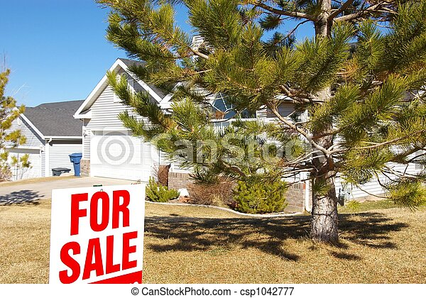 Home For Sale - csp1042777