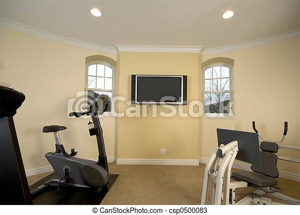 home gym - csp0500083