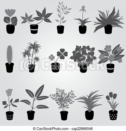 house plants drawing. vector home houseplants and flowers in pot grayscale eps10 house plants drawing s