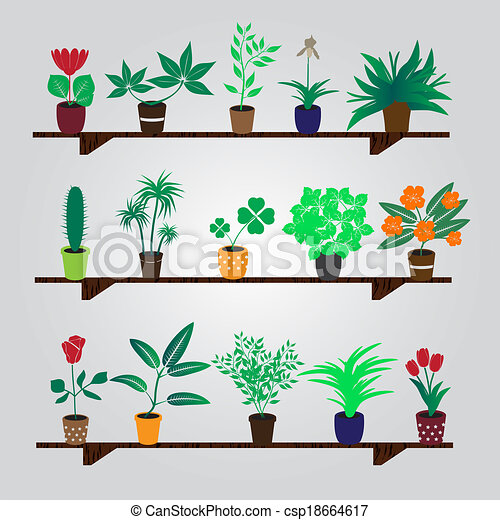 house plants drawing. vector home houseplants and flowers in pot on the shelf eps10 house plants drawing