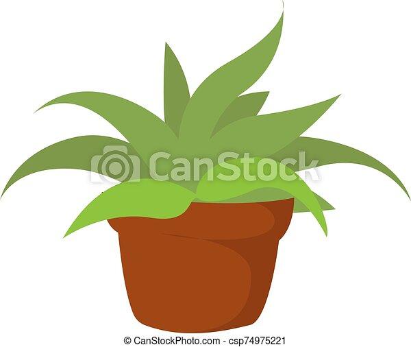 Home plant, illustration, vector on white background. - csp74975221