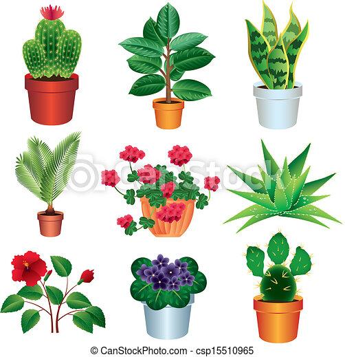 Tropical Plant Doodles