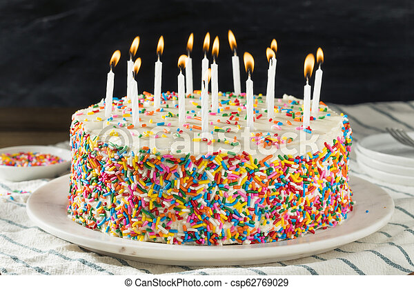 Astounding Homemade Sweet Birthday Cake With Candles Ready To Serve Funny Birthday Cards Online Elaedamsfinfo
